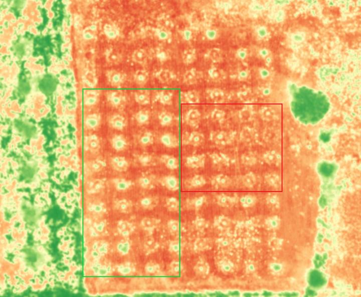 Agricultura de precisão – WingtraOne e Micasense Rededge-MX